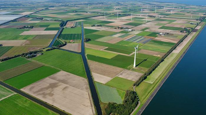 Microsoft wind farm Nederland