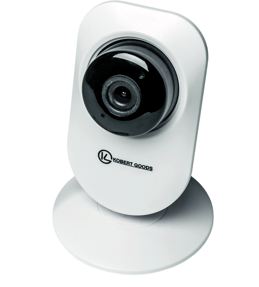 IP-camera netwerk veiligheid beveiliging security hack monitoren monitoring
