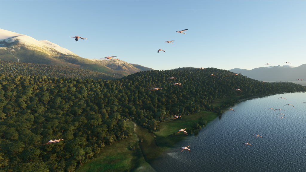 microsoft flight simulator 2020 vergezichten